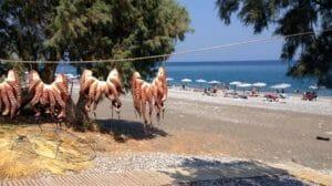 Polpi ad essiccare fuori da una taverna, una tipica immagine della cucina Greca