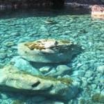 Il bellissimo mare di Capraia