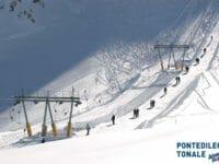 Pasqua ad Adamello Ski, Presena