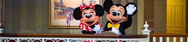Offerte Disneyland